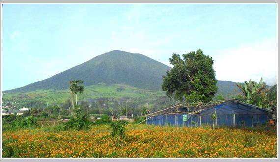 Gunung Dingin bengkulu
