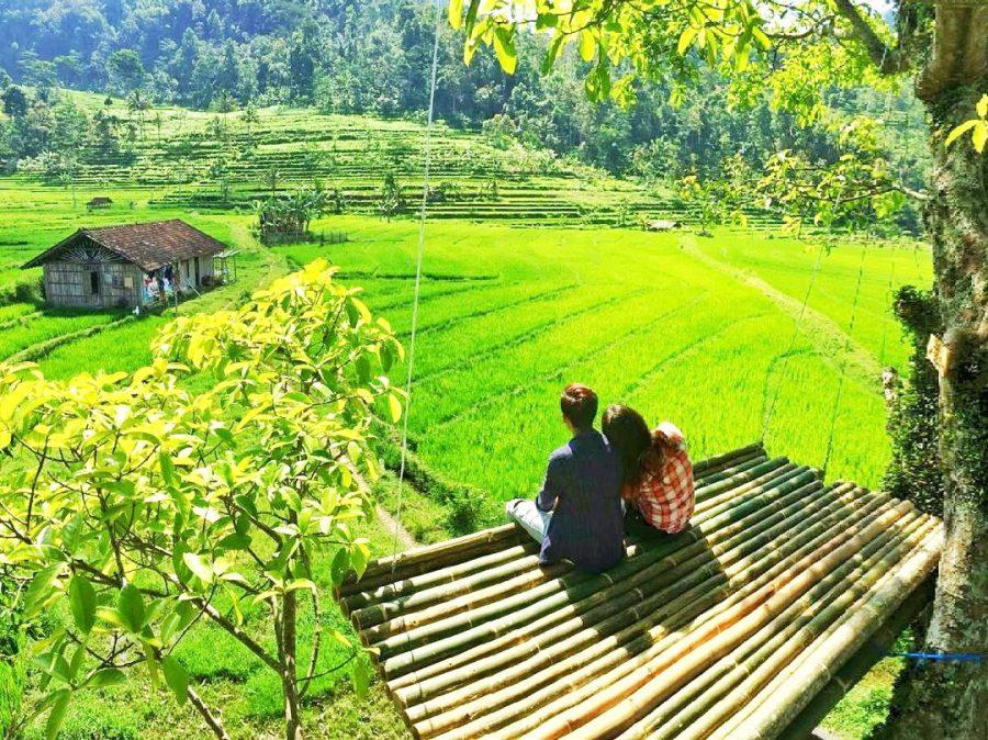 Rumah Pohon Kali Kulon semarang