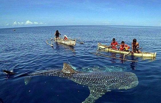 tempat wisata gorontalo Pantai Botu Barani